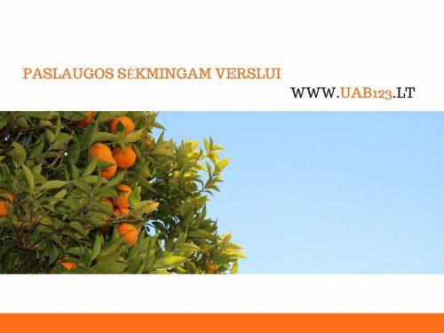 UAB123 – Įmonių steigimas ir pardavimas nuo 100 eur