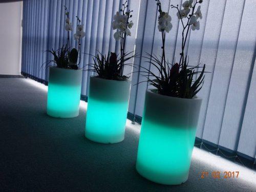 Šviečiantys LED vazonai: dekoratyviniams augalams ir kt.