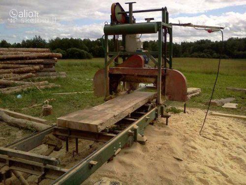 Pjauname mediena