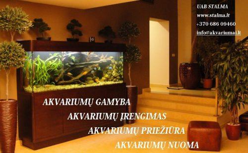 Nestandartinių akvariumų projektavimas, gamyba, įrengimas bei priežiūra. Akvariuminių prekių pardavimas. Akvariumų nuoma