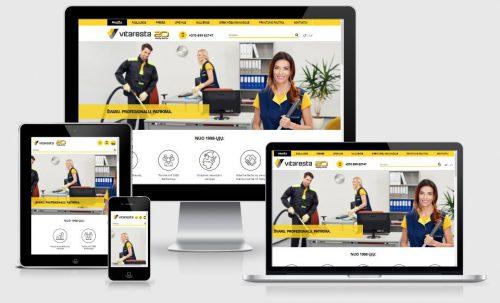 Internetinių svetainių kūrimas, SEO paslaugos