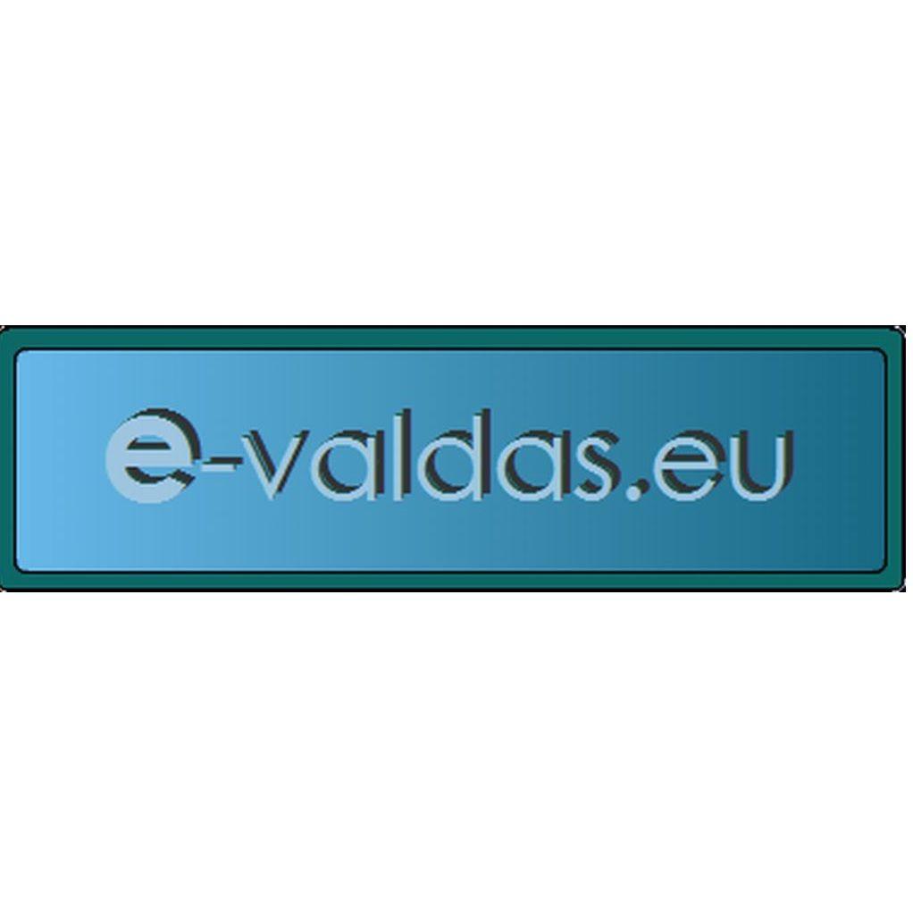 Elektronikos prietaisų gamyba, programavimo darbai