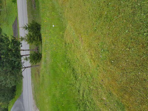Žolės , vejos pjovimas.