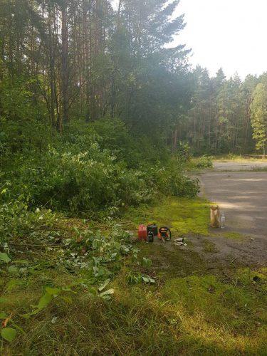 Apleistu sklypų tvarkymas.  Medžių  , krūmų pjovimas.