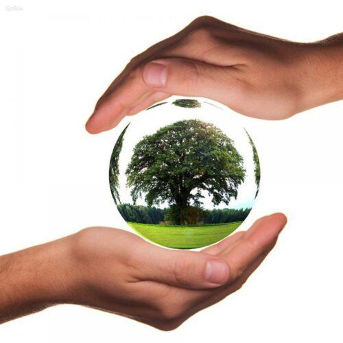 Ekologiškas valymas BioLife Cleaning